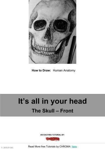 PDF Tutorial - How to Draw, Human Anatomy, Human Anatomy, The Skull – Front