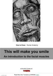 PDF Tutorial - How to Draw, Human Anatomy, This will make you smile, An introduction to the facial muscles