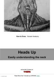 PDF Tutorial - How to Draw, Human Anatomy, Heads Up, Easily understanding the neck